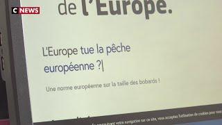 Elections européennes : le site contre les fake news