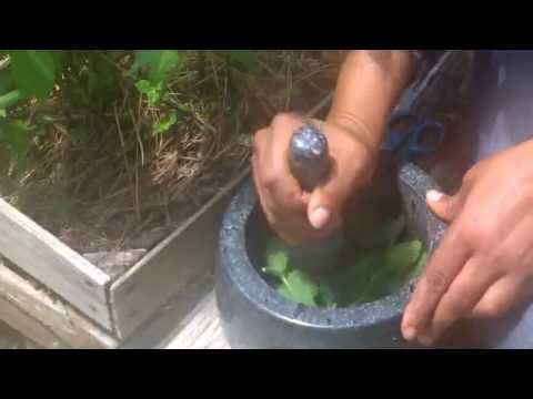 How to make peppermint oil: The ghetto Muslim Housewife