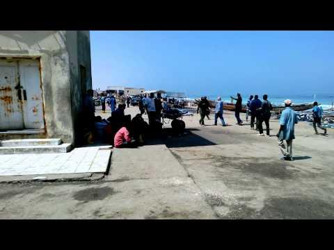 Fish Market Nouakchott Mauritanie West Africa