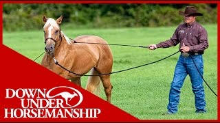 Clinton Anderson: Training a Rescue Horse, Part 1  Downunder Horsemanship