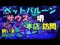 (124) ペットバルーンサウスへ訪問 2018/04/27 【AQUARIUM】