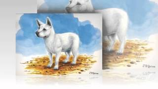 Hawaiian Poi Dog Dog breed.