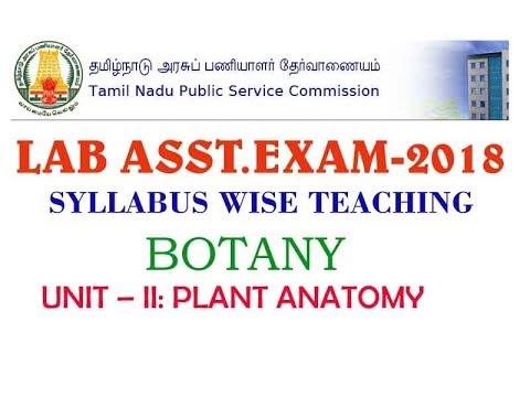 Tnpsc Lab Asst Exam 2018 Topicbotany Unit Ii Plant Anatomy
