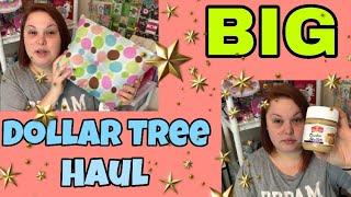 BIG DOLLAR TREE HAUL   NEW ITEMS!!!   DECEMBER 9, 2018