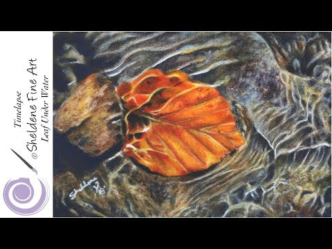 TIMELAPSE    Drawing a Leaf under water on Pastelmat paper with Pablo Pencils