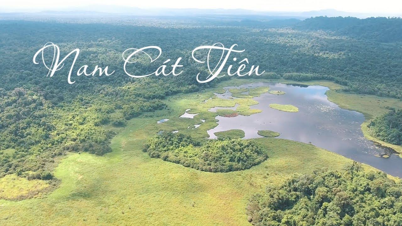 Rừng quốc gia Nam Cát Tiên tuyệt đẹp qua góc máy Flycam - YouTube