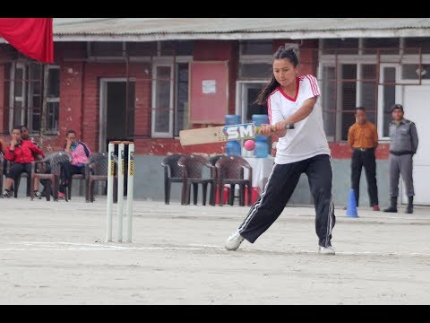 Api School Vs Dav School Girls Cricket Series (Highlights & Review)