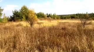 видео Объявления о продаже земель сельскохозяйственного назначения