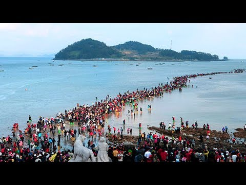 समुद्र के बीच बन जाता है रास्ताJindo Mysterious Sea Route Jindo Sea Parting Science Behind the Magic