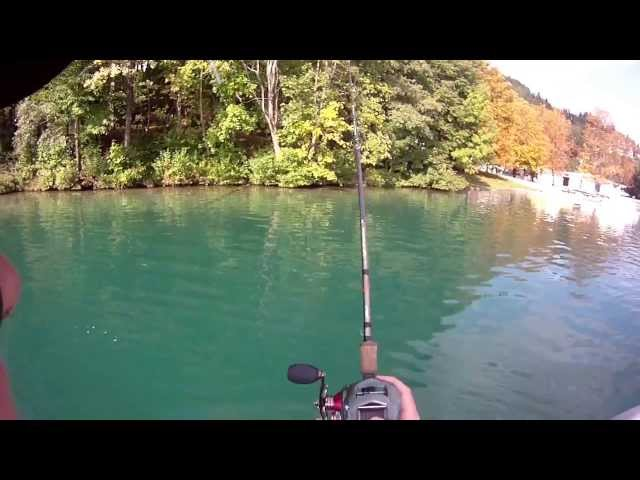 Savage Gear 3D trout swimbait 27,5cm casting Travel Video