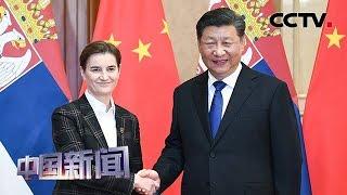 [中国新闻] 习近平会见塞尔维亚总理布尔纳比奇   CCTV中文国际