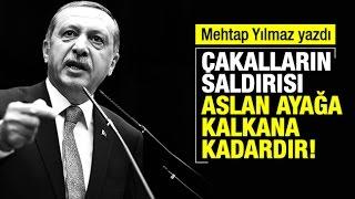 Mehtap Yılmaz    Erdoğan'ın şakağına dayadığınız o silahı var ya