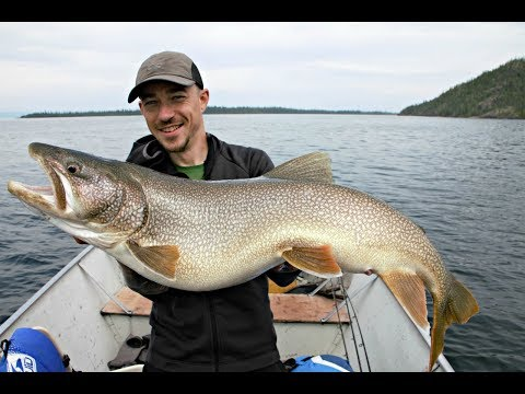 Catching MONSTER Lake Trout And Fly Fishing Grayling - Great Slave Lake-Frontier Fishing Lodge