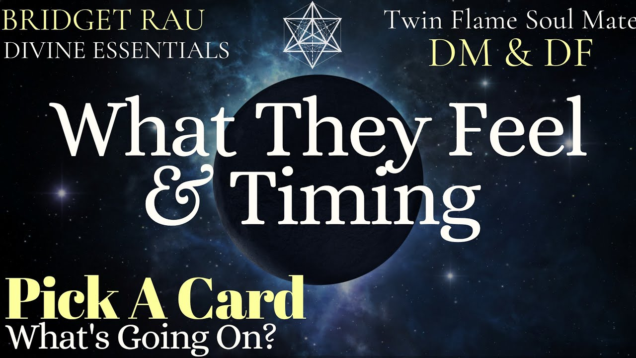 Pick A Card ❤ What They Feel, Timing, What's Going On in Love? 💕 Psychic Tarot Reading *Timeless**