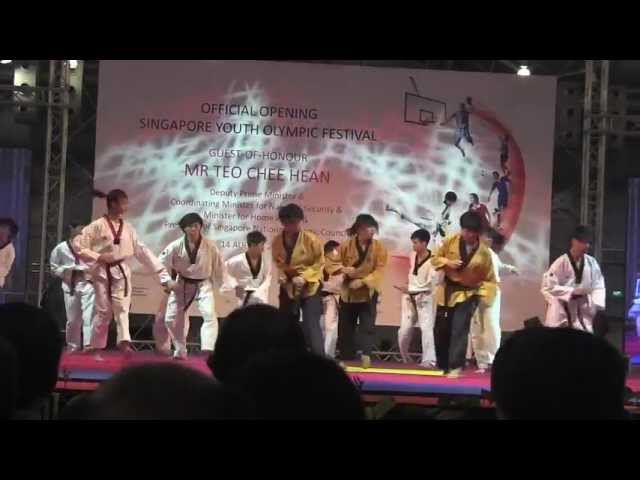 1st Singapore Youth Olympic Festival 2011 (Demo)