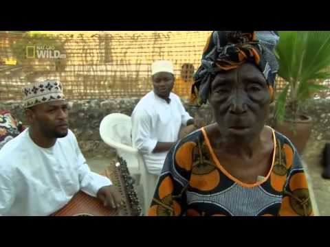 Nat Geo Wild HD Islands Zanzibar Nature History Documentary