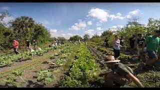 Sweetwater Organic Farm