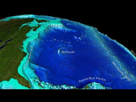 Oceanography 3 (Marine Provinces)