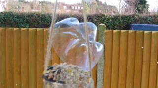 Make An Emergency Bird Feeder