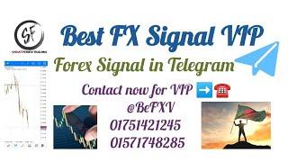 Forex Copy Trading On Telegram