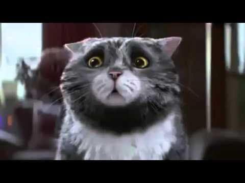 Sainsbury's OFFICIAL Christmas Advert 2015 – Mog's Christmas Calamity HD