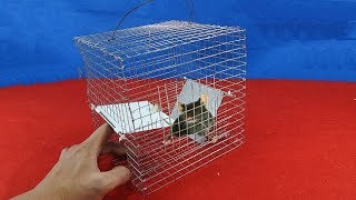 Easy mouse traps Part 12 - 1001 way of catching the mouse-[Piece of Paper]