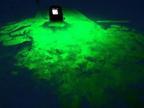Bio-Lume Aqua Vu Underwater Light Reel Deal
