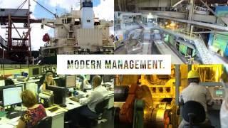 Paranapanema S. A. - Corporate Video 2016
