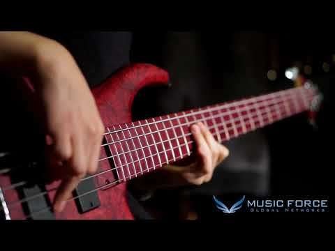 [MusicForce] MTD AG5 Andrew Gouche Sig. Demo - Bassist 장승호