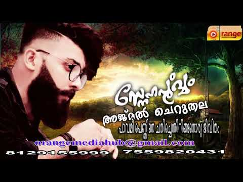 Pavamee Pennine Chathichenthin ajmal cheruthala 2018 song Team Dilse |