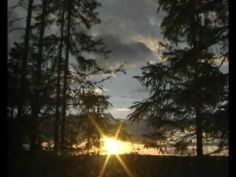 Mitt i naturen_Vargspan 2003-10-22