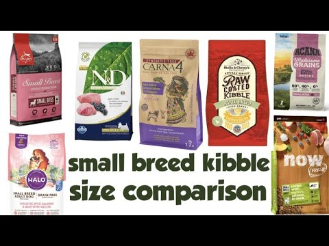 Small breed dog food review kibbles size compare / Orijen/ Carna4/ Farmina/ Stella and chewys/ Acana