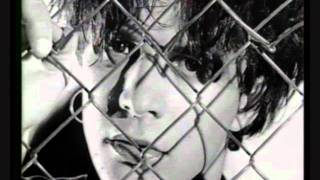 nicola sirkis indochine never turn your back on mother earth