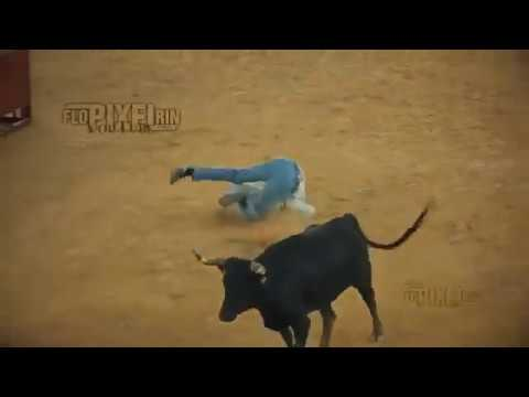 Funny Bull Fighting Gone Wrong - 2019 Update - Ouch That's Gotta Hurt!  Funny People Fail Clips