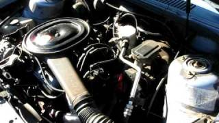 1984 Buick Skylark Cold Start