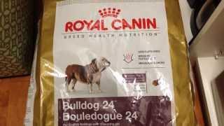 English Bulldog, Royal Canin Dog Food