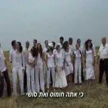 Inbal and Yoni Weeding Clip