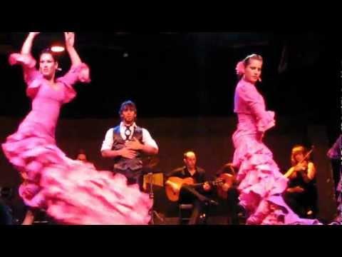 Palacio del Flamenco 1