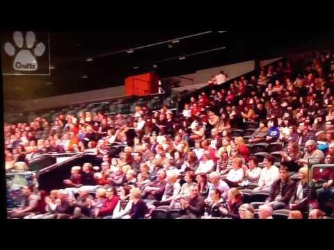 Anthony Clarke & Ruby Winning Crufts Champ 2013