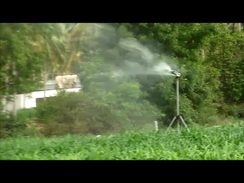 Waste dairy farm water for cultivation