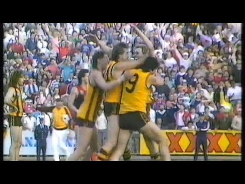 1987 VFL Preliminary Final - Hawthorn vs Melbourne