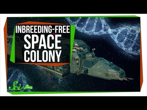Founding An Inbreeding-Free Space Colony