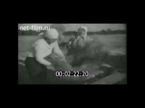 1940г. с. Старая Рудка. колхоз Культиватор. Шарангский район. Нижегородская область