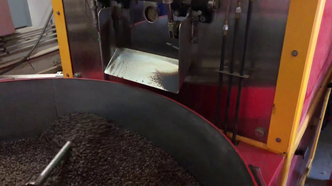 Coffee roasting factory green beans to roasted cooling tray [ASMR] [HD]