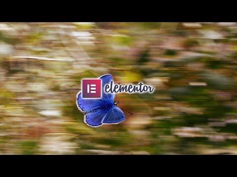 05 Widgets Généraux  (Elementor)
