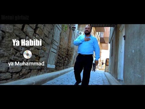 Seyyid Taleh Boradigahi - Ey Sevgili - Ya Habibi - 2019 HD Klip