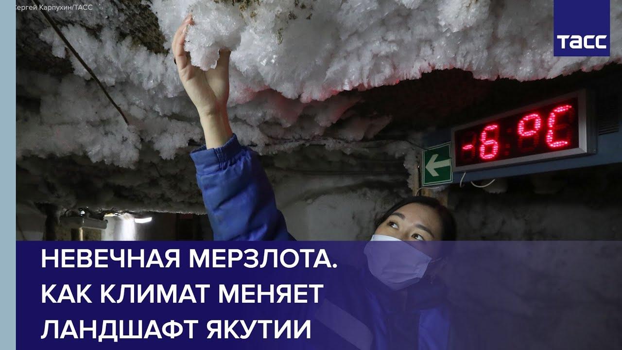 Невечная мерзлота. Как климат меняет ландшафт Якутии