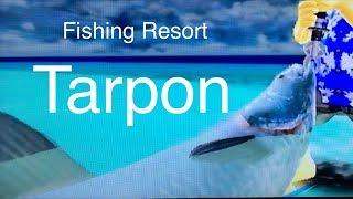Let's Play: Fishing Resort Wii, Tarpon