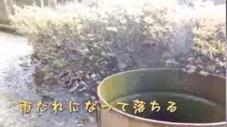 大川山・(讃岐山脈第二の高峰)