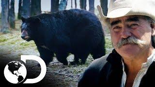 Vivendo perto de animais selvagens | Vida remota | Discovery Brasil